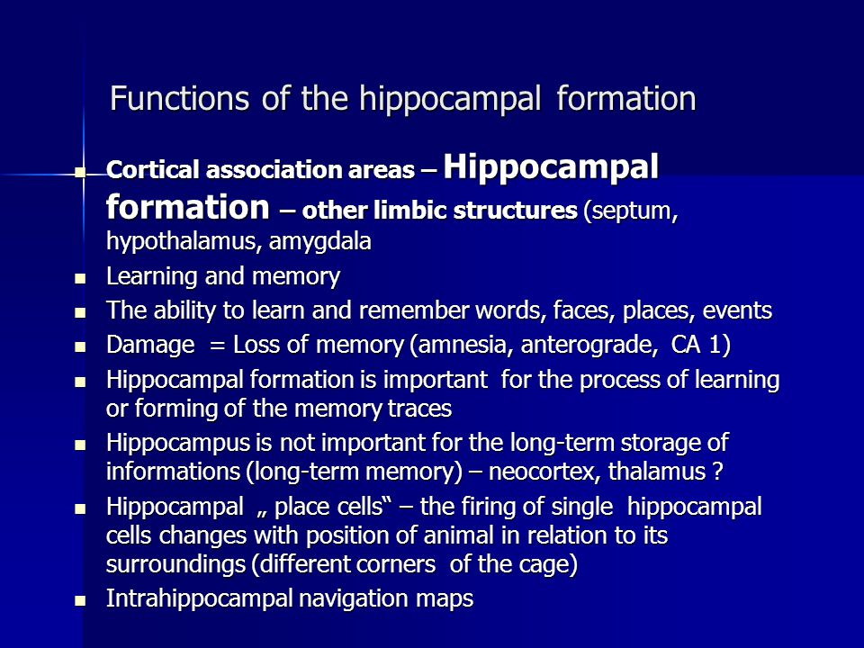 Functions of the hippocampal formation
