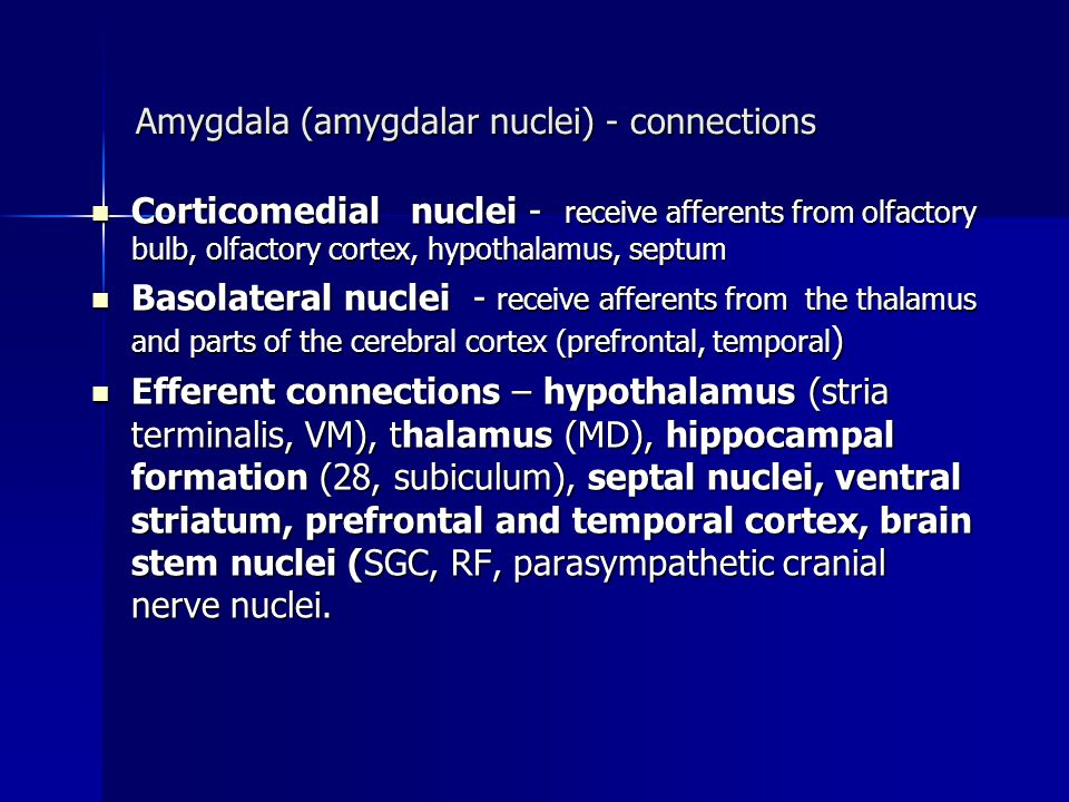 Amygdala (amygdalar nuclei) - connections