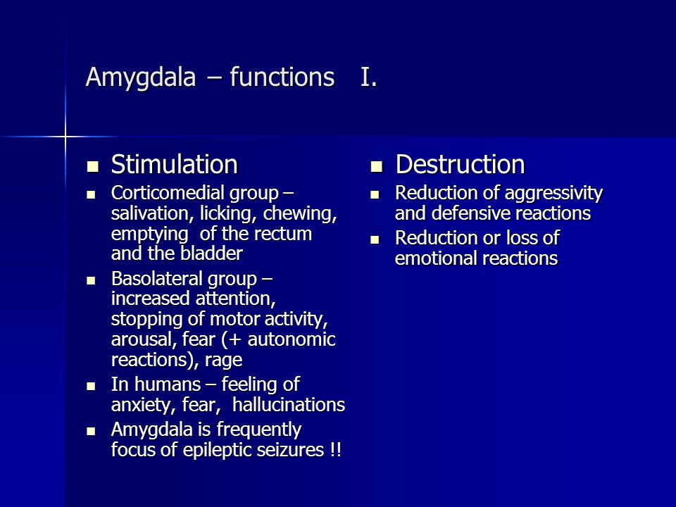 Amygdala – functions I. Stimulation Destruction