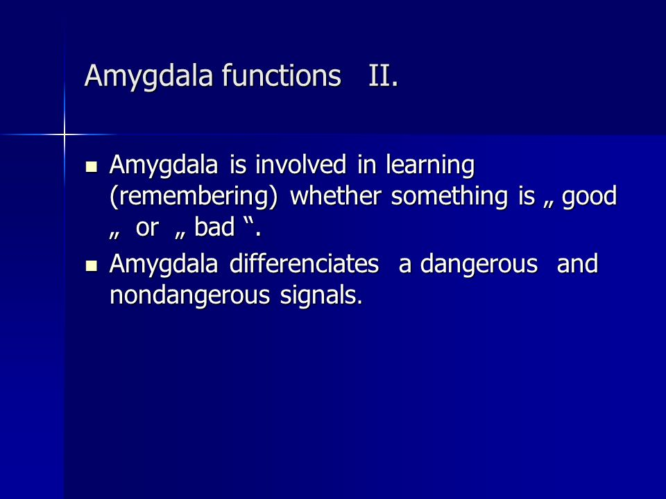 "Amygdala functions II. Amygdala is involved in learning (remembering) whether something is "" good "" or "" bad ."