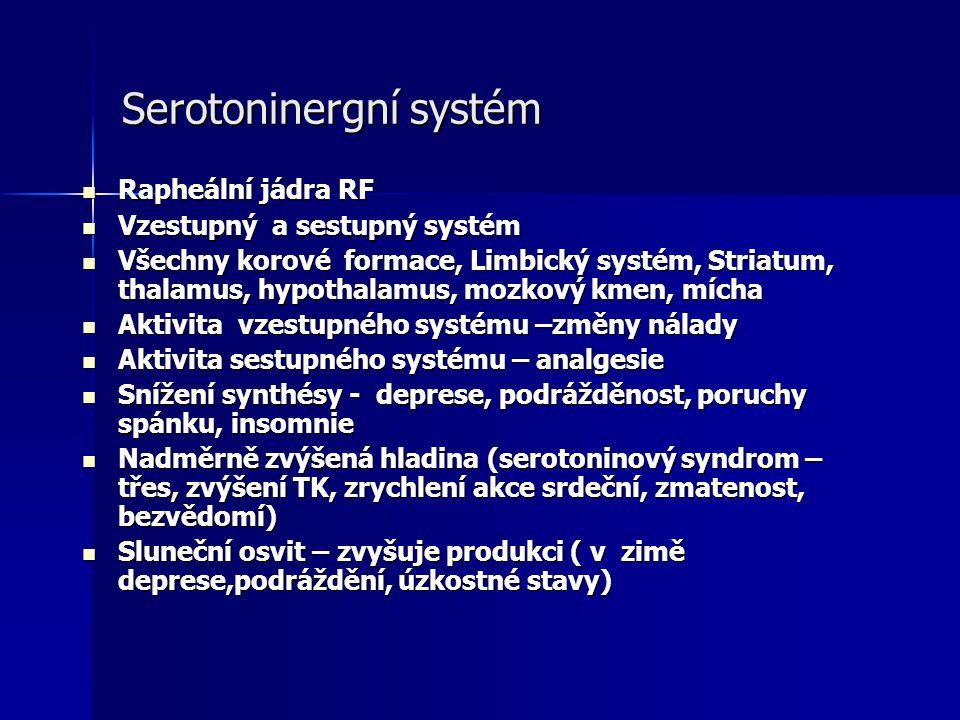 Serotoninergní systém