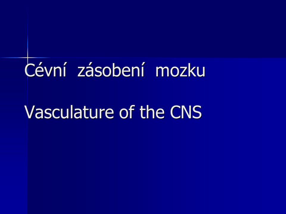 Cévní zásobení mozku Vasculature of the CNS