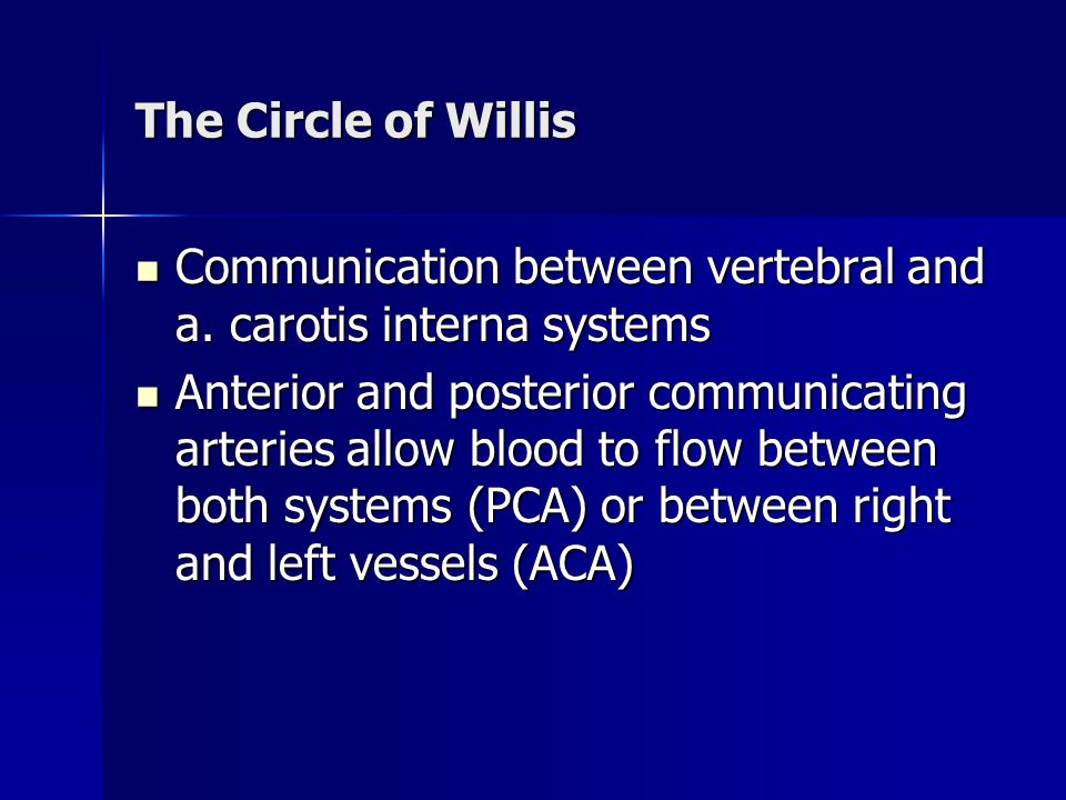 The Circle of Willis Communication between vertebral and a. carotis interna systems.