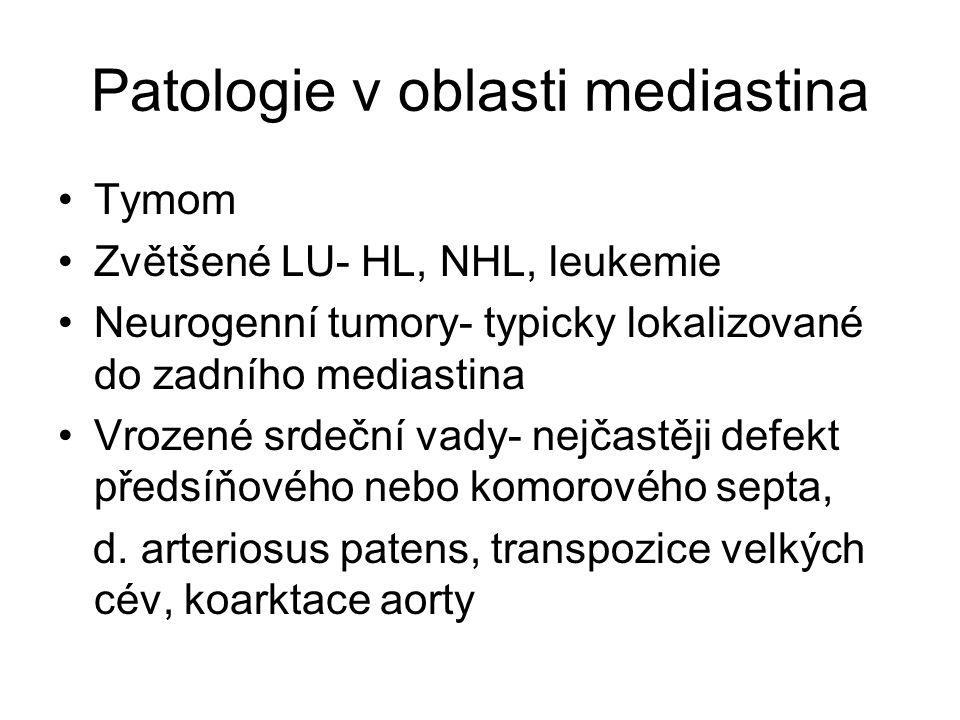 Patologie v oblasti mediastina