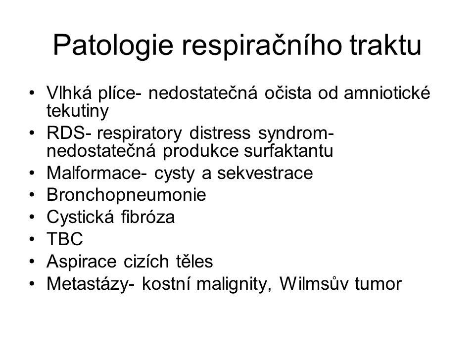 Patologie respiračního traktu