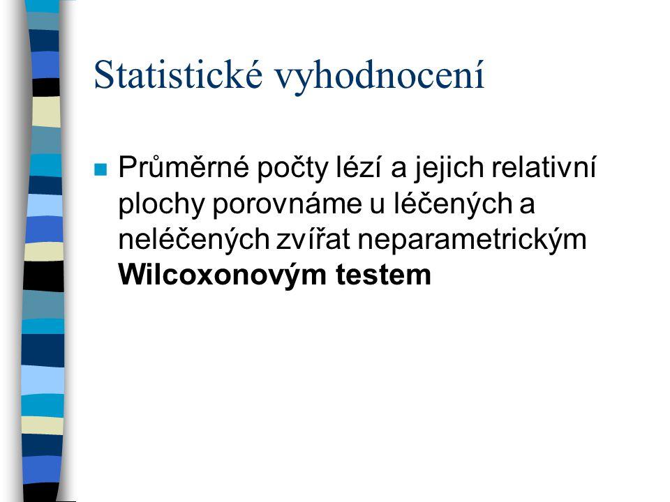 Statistické vyhodnocení