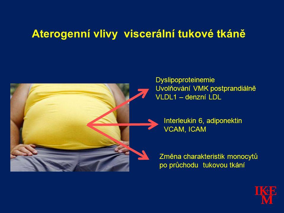 Aterogenní vlivy viscerální tukové tkáně