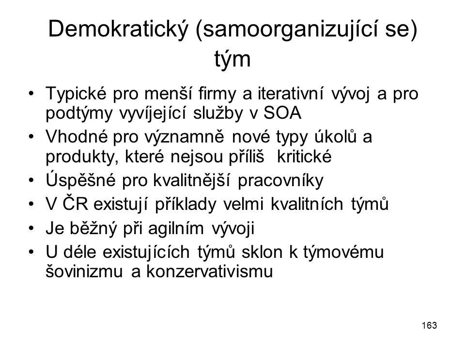 Demokratický (samoorganizující se) tým