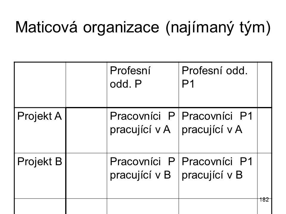 Maticová organizace (najímaný tým)