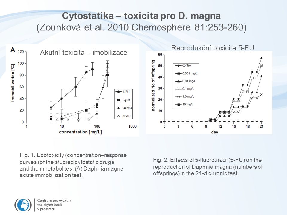 Cytostatika – toxicita pro D. magna