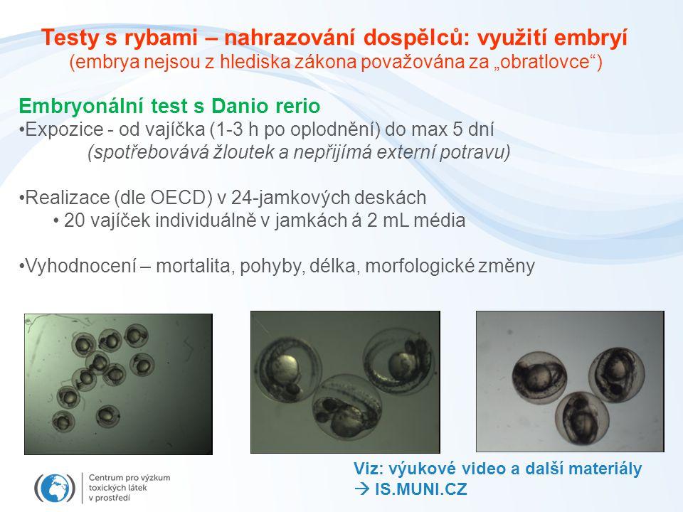 Testy s rybami – nahrazování dospělců: využití embryí