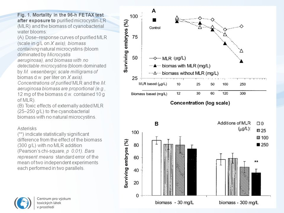 Fig. 1. Mortality in the 96-h FETAX test after exposure to purified microcystin-LR (MLR) and the biomass of cyanobacterial