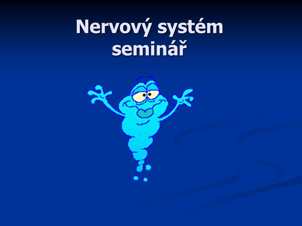 Nervový systém seminář