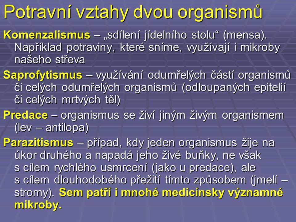 Potravní vztahy dvou organismů