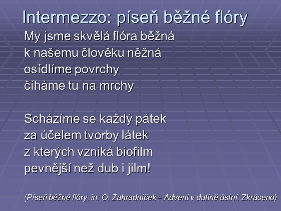 Intermezzo: píseň běžné flóry
