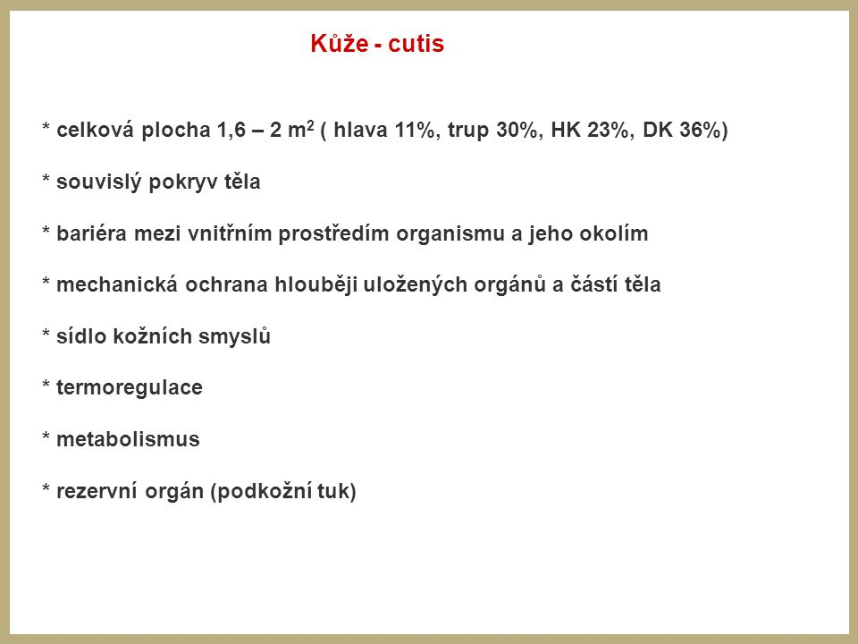 Kůže - cutis * celková plocha 1,6 – 2 m2 ( hlava 11%, trup 30%, HK 23%, DK 36%) * souvislý pokryv těla.