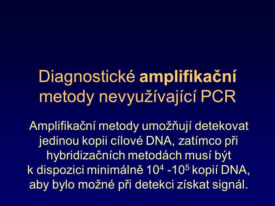 Diagnostické amplifikační metody nevyužívající PCR