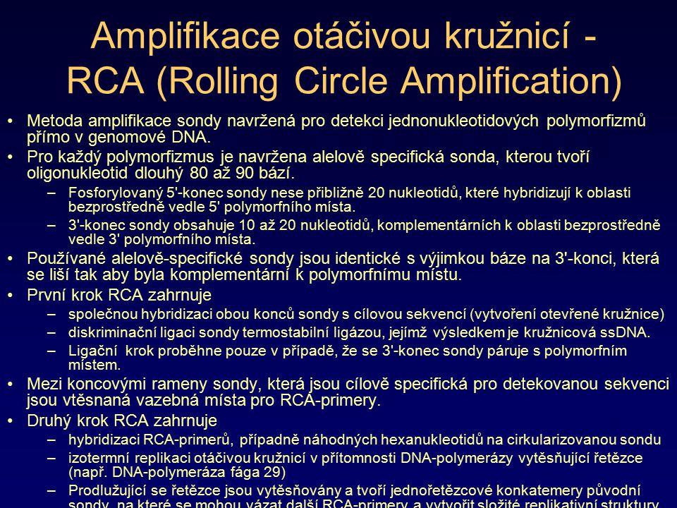 Amplifikace otáčivou kružnicí - RCA (Rolling Circle Amplification)