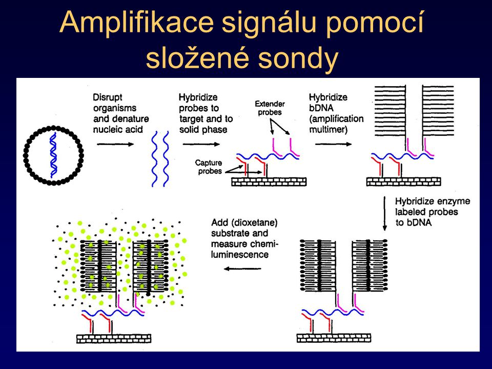 Amplifikace signálu pomocí složené sondy