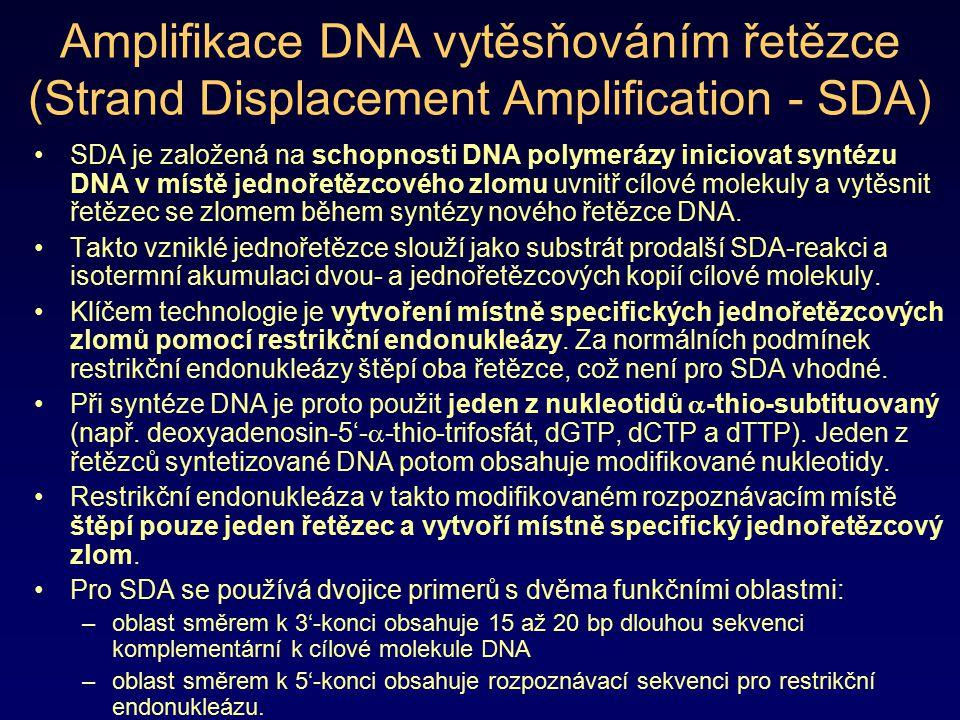 Amplifikace DNA vytěsňováním řetězce (Strand Displacement Amplification - SDA)