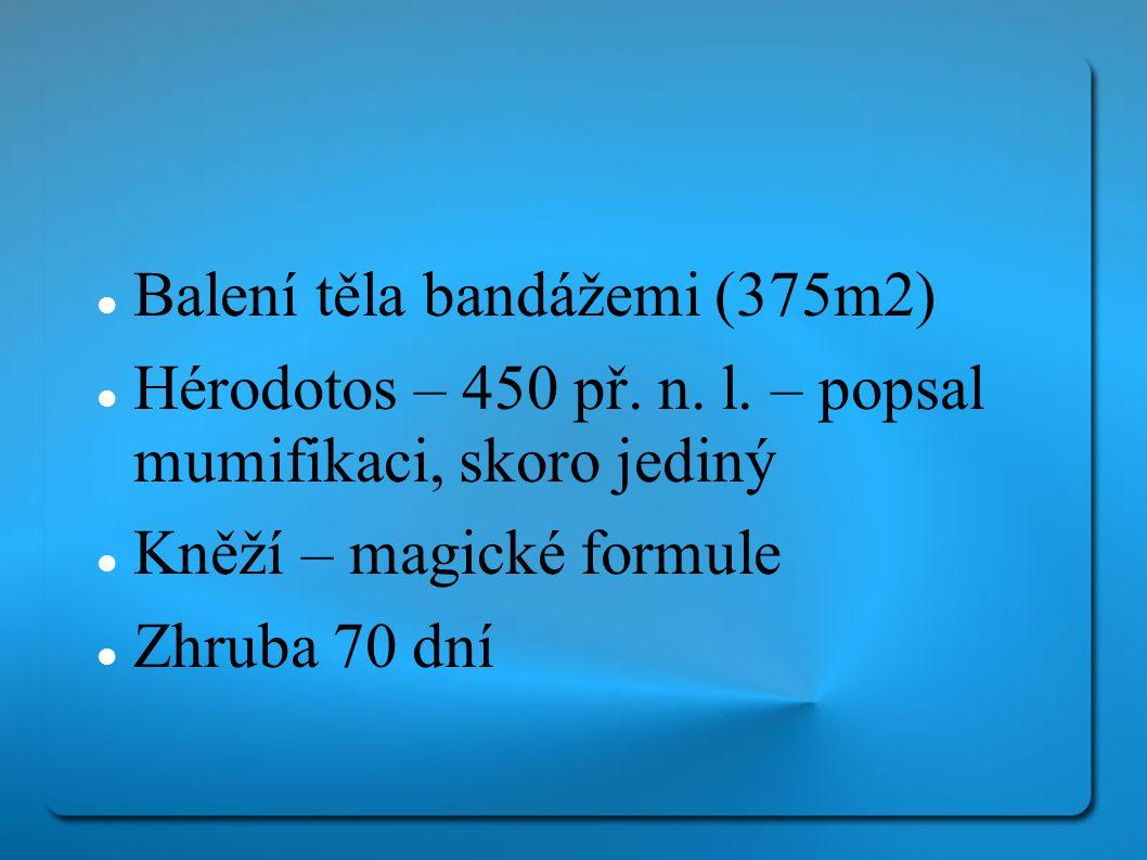 Balení těla bandážemi (375m2)