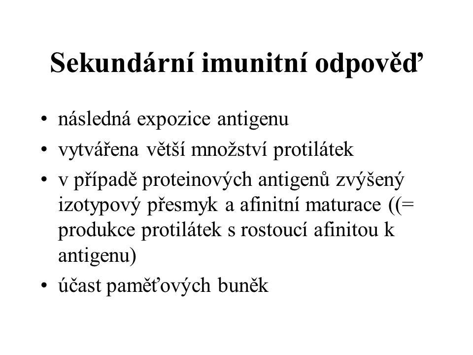 Sekundární imunitní odpověď