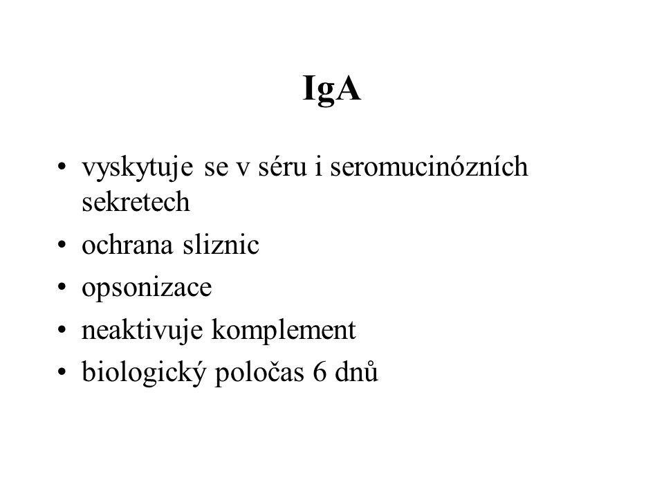 IgA vyskytuje se v séru i seromucinózních sekretech ochrana sliznic