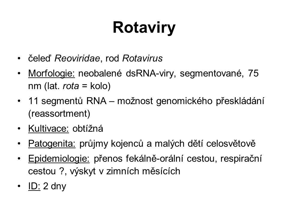 Rotaviry čeleď Reoviridae, rod Rotavirus