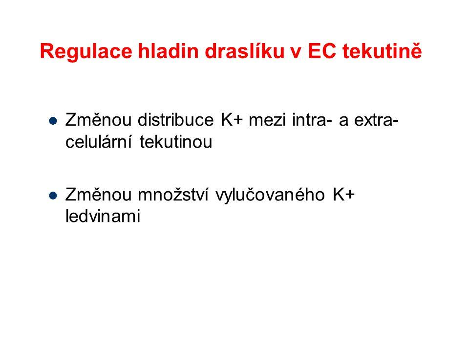 Regulace hladin draslíku v EC tekutině