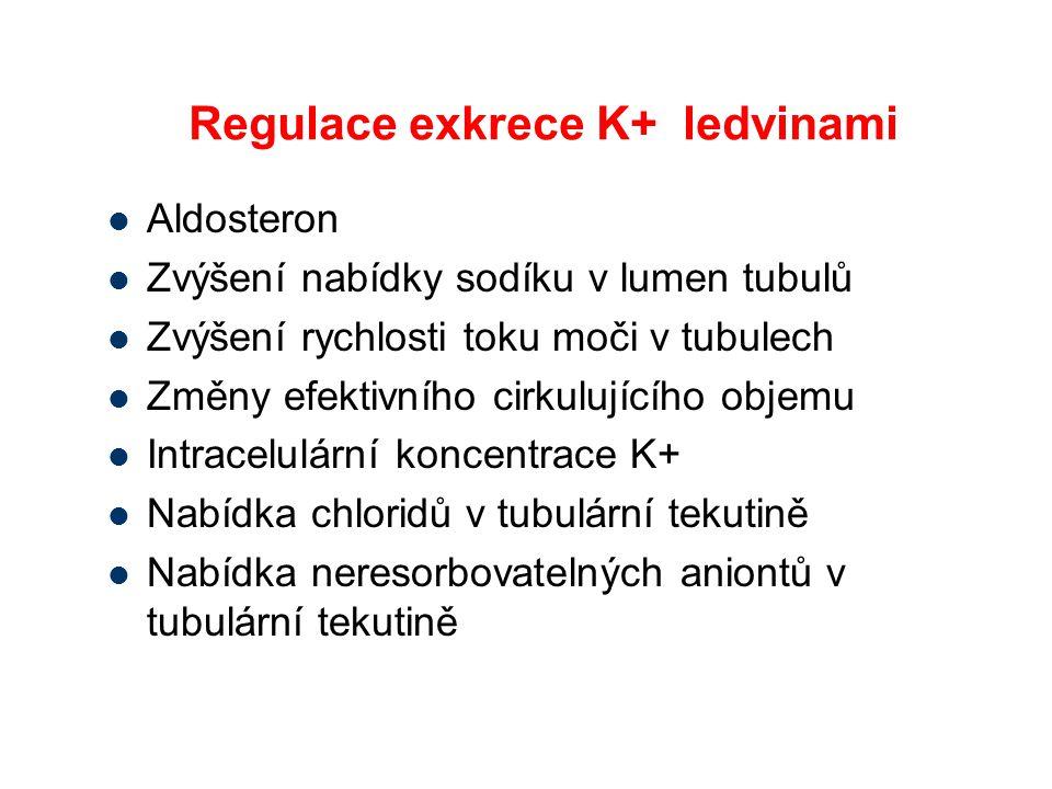 Regulace exkrece K+ ledvinami