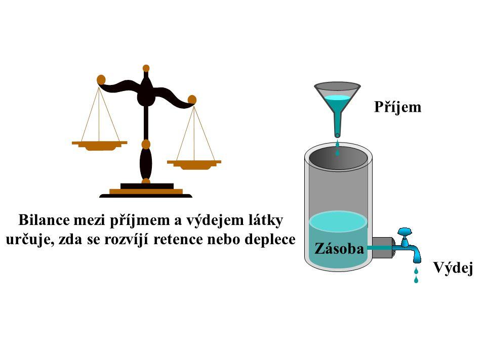 Bilance mezi příjmem a výdejem látky