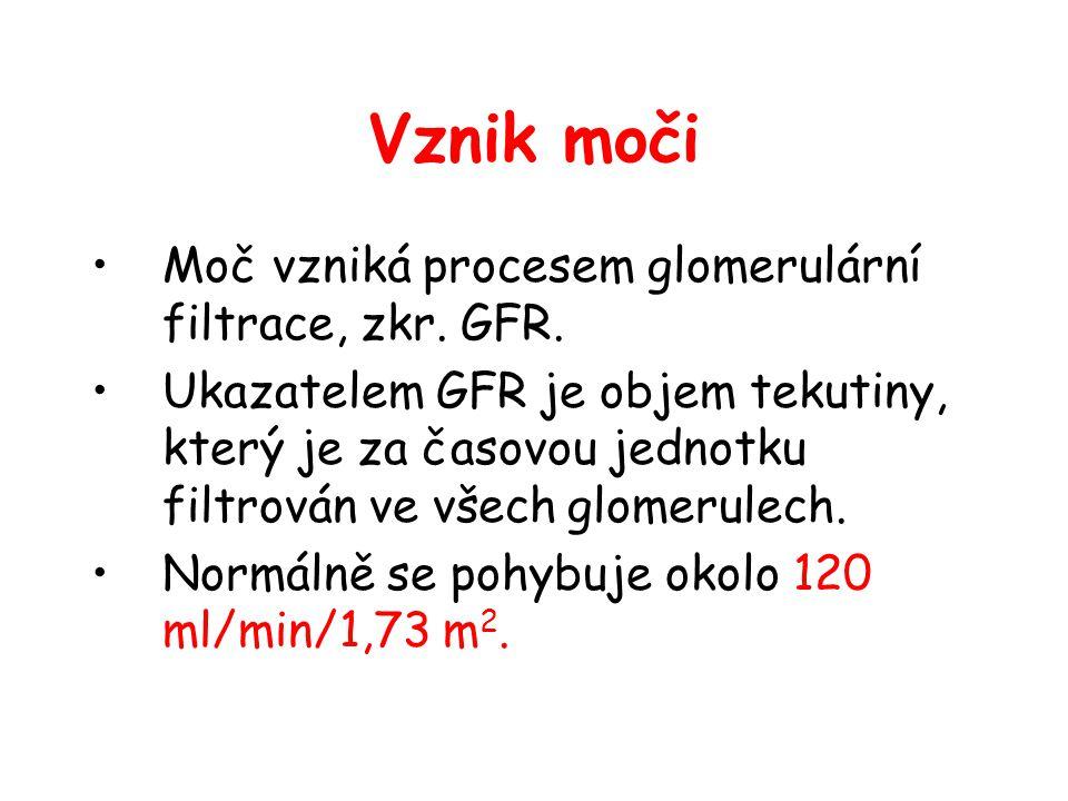 Vznik moči Moč vzniká procesem glomerulární filtrace, zkr. GFR.