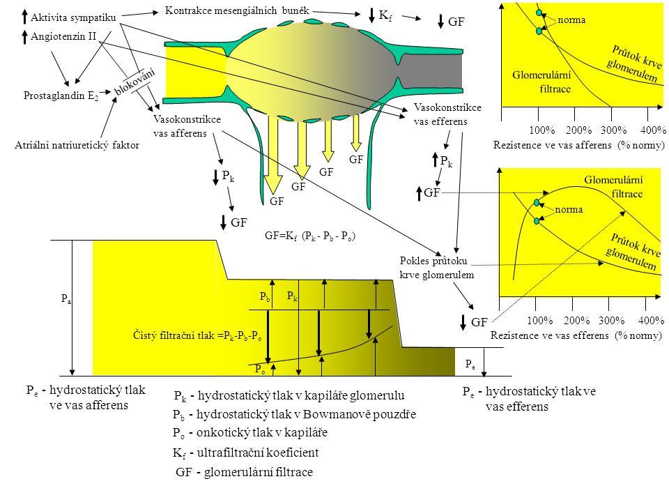 Pk - hydrostatický tlak v kapiláře glomerulu