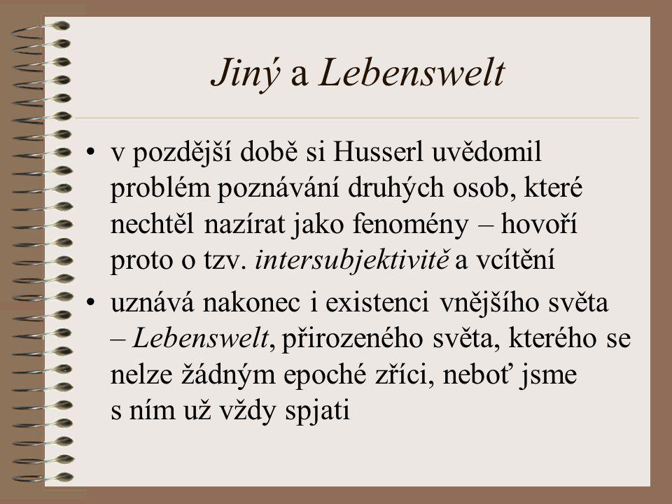 Jiný a Lebenswelt