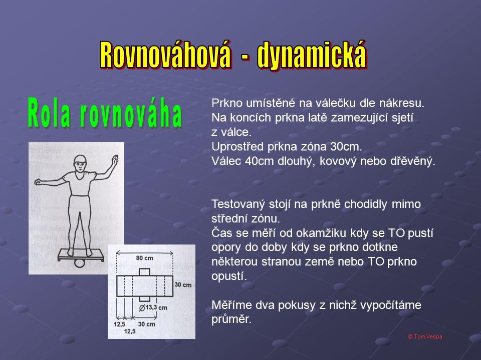 Rovnováhová - dynamická