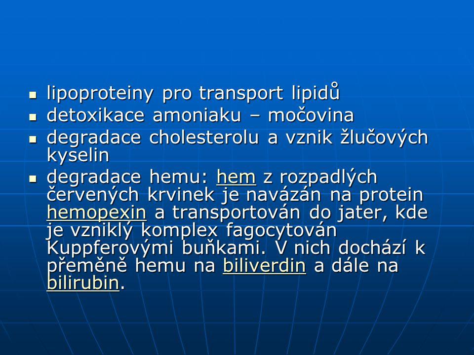 lipoproteiny pro transport lipidů