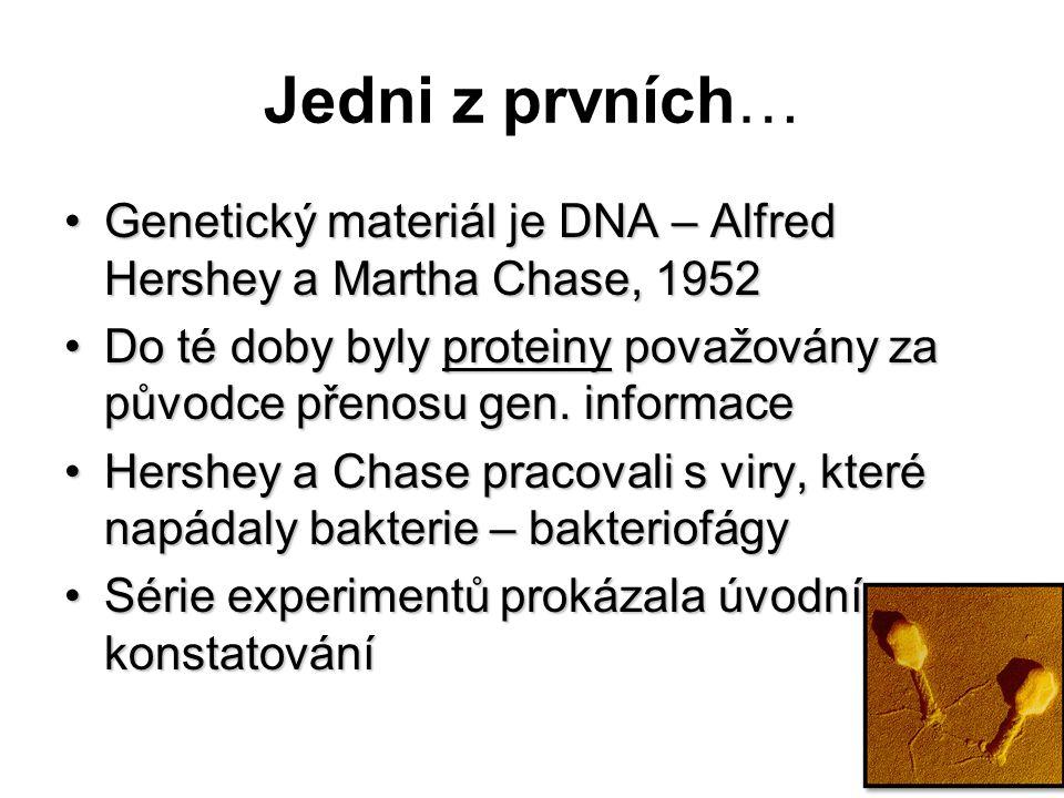 Jedni z prvních… Genetický materiál je DNA – Alfred Hershey a Martha Chase, 1952.