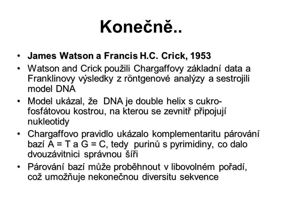 Konečně.. James Watson a Francis H.C. Crick, 1953