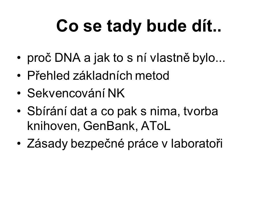 Co se tady bude dít.. proč DNA a jak to s ní vlastně bylo...