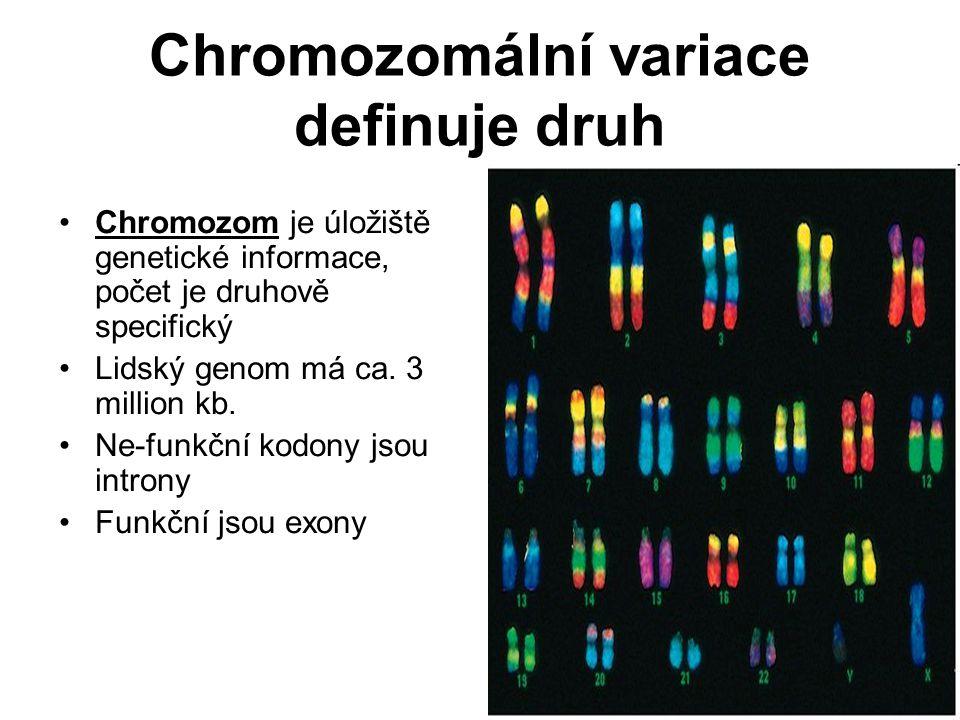 Chromozomální variace definuje druh