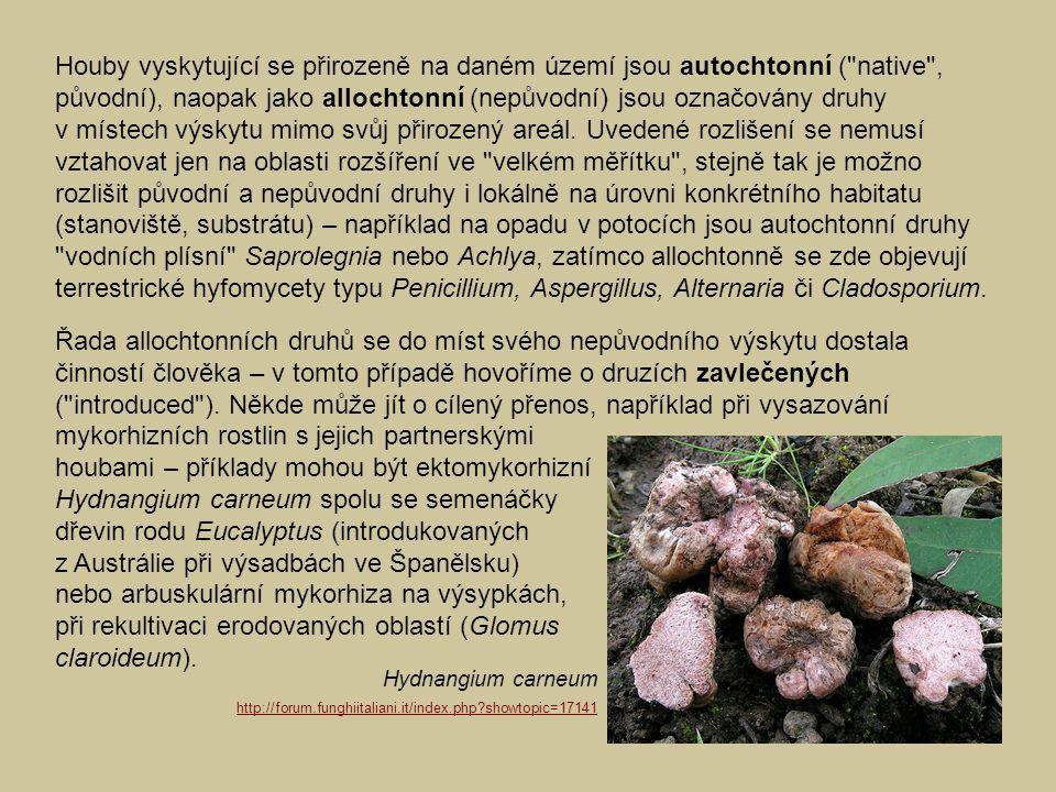 houbami – příklady mohou být ektomykorhizní