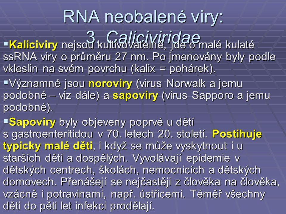 RNA neobalené viry: 3. Caliciviridae