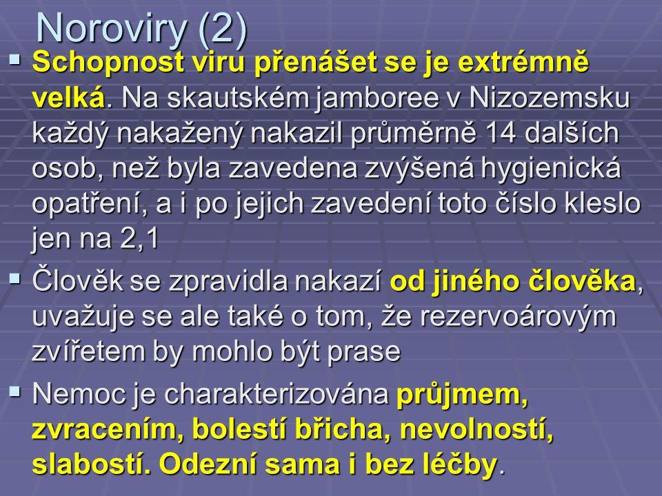 Noroviry (2)