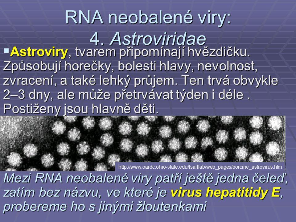 RNA neobalené viry: 4. Astroviridae