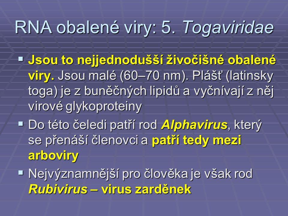 RNA obalené viry: 5. Togaviridae