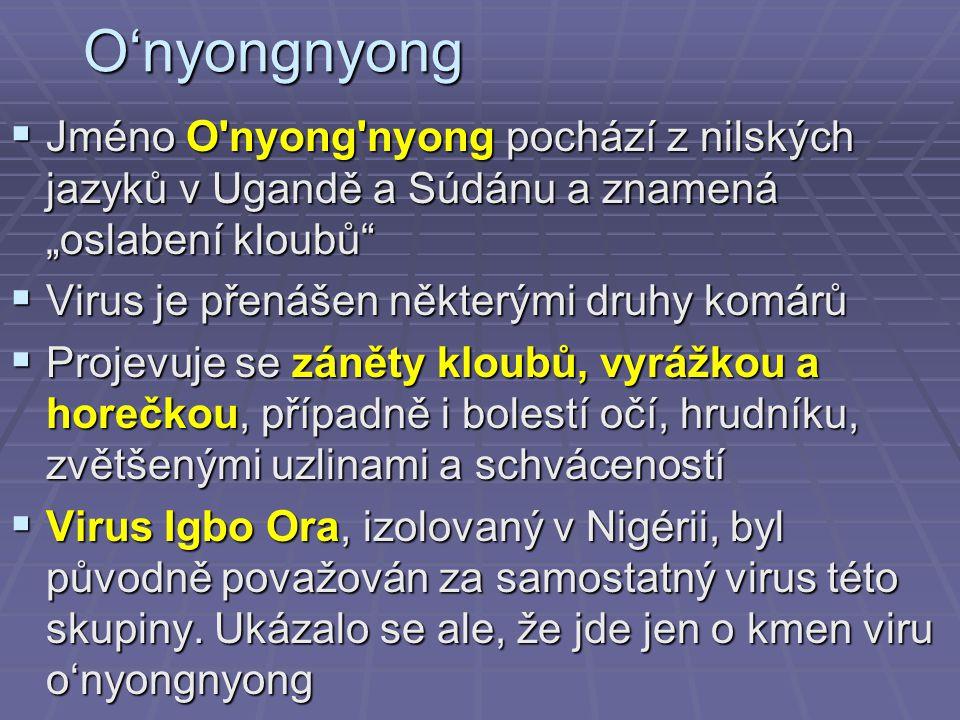 """O'nyongnyong Jméno O nyong nyong pochází z nilských jazyků v Ugandě a Súdánu a znamená """"oslabení kloubů"""