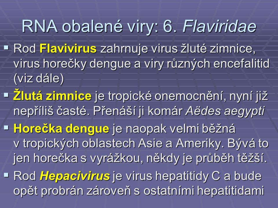 RNA obalené viry: 6. Flaviridae