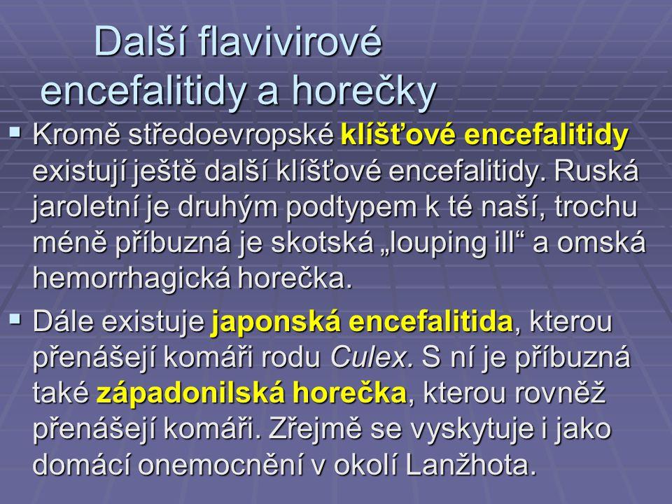 Další flavivirové encefalitidy a horečky