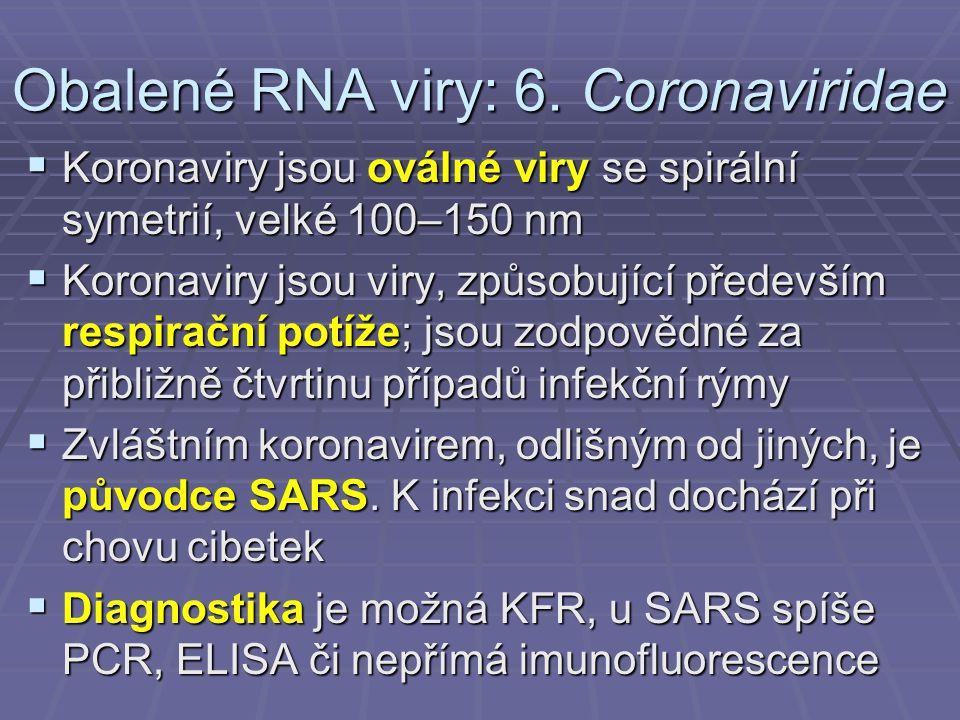 Obalené RNA viry: 6. Coronaviridae
