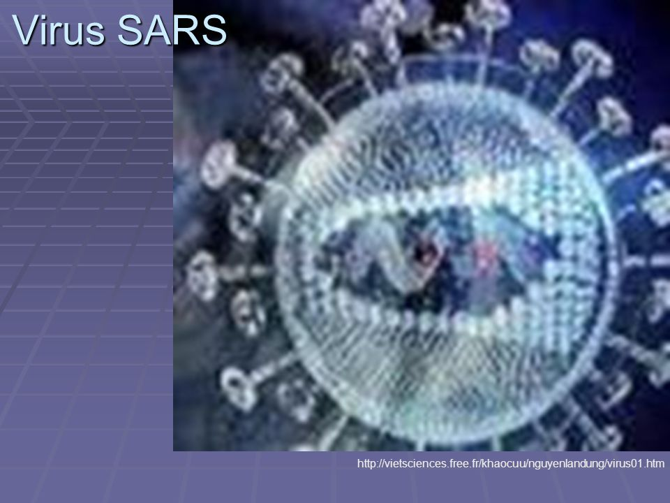 Virus SARS http://vietsciences.free.fr/khaocuu/nguyenlandung/virus01.htm